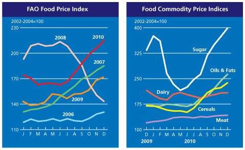 Food Price Indices by FAO