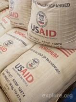USAID sorghum